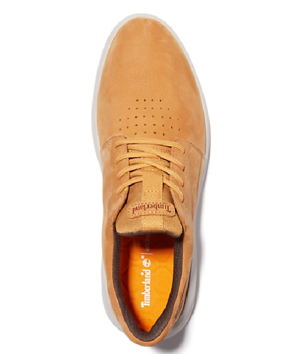 Timberland Sneakers basses cuir (miel) homme automne/hiver
